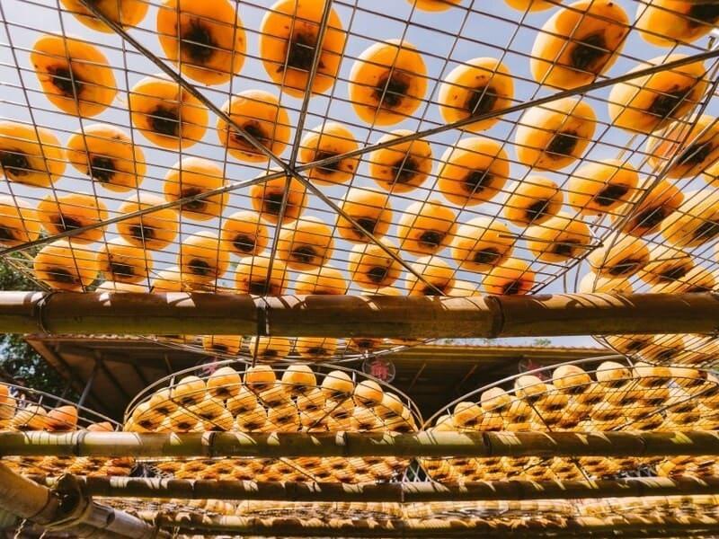【季節限定プラン】毎年9月〜12月の間は柿餅の手作り体験ができます。