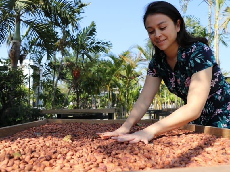 台湾の農業文化への理解を深めましょう