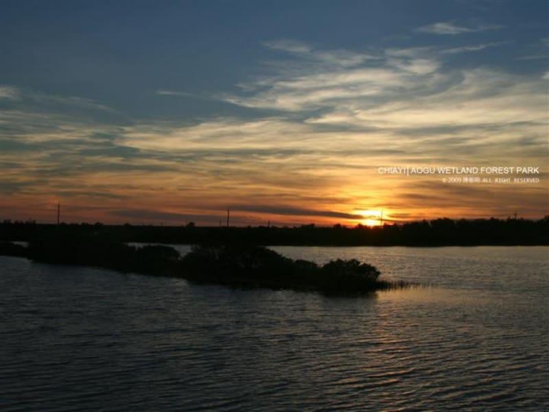 Visit Aogu Wetlands