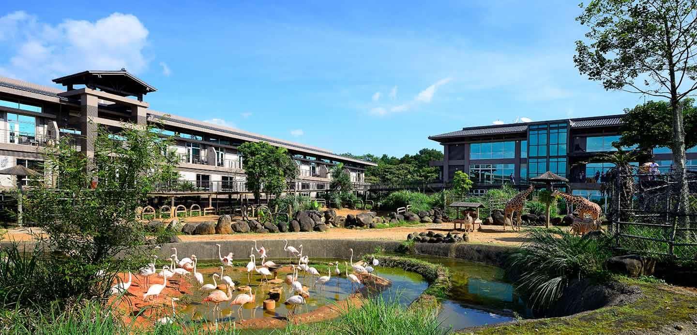 Animal Safari and Village Theme Park at Leofoo Resort Guanshi