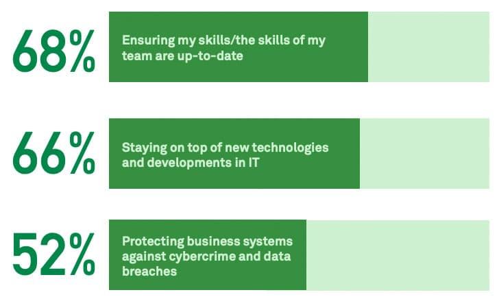 IT Professionals' Top 3 Concerns