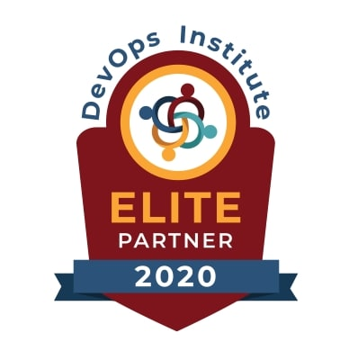 DOI Elite Partner 2020 logo medium