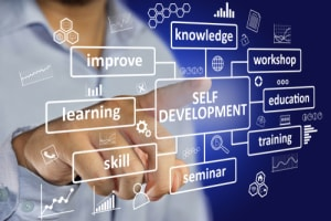 How an Online Course can Complement Your Degree