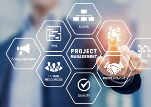 Certified Project Management Professional
