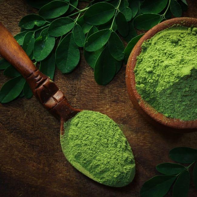 Moringa – Warum ist es so gesund?