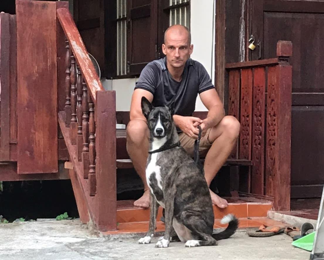 การรับเลี้ยงสุนัข