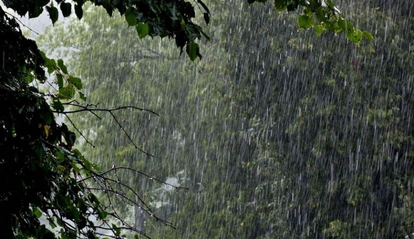 Yaponiyada leysan yağışlar nəticəsində 8 nəfər həlak olub
