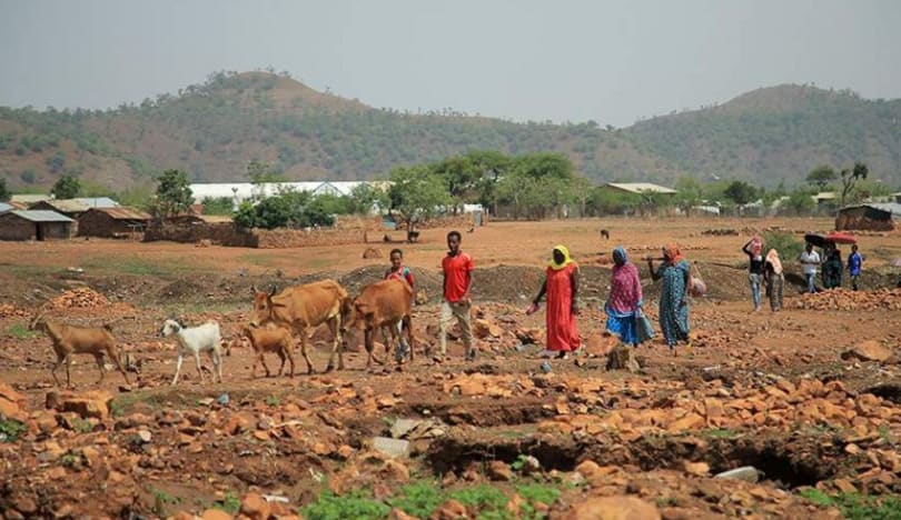 BMT Efiopiyada humanitar faciə ilə bağlı bəyanat yayıb
