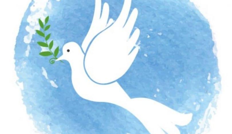 Azərbaycan Ombudsmanı beynəlxalq təşkilatlara müraciət edib