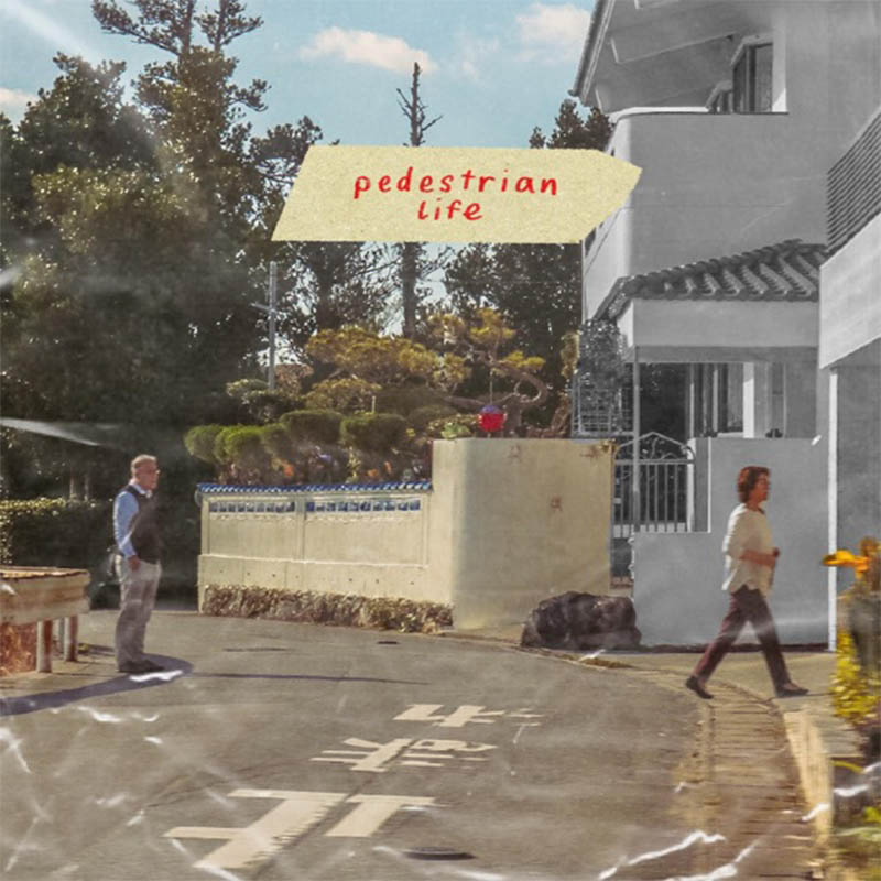 Wednesday's Child - Pedestrian Life