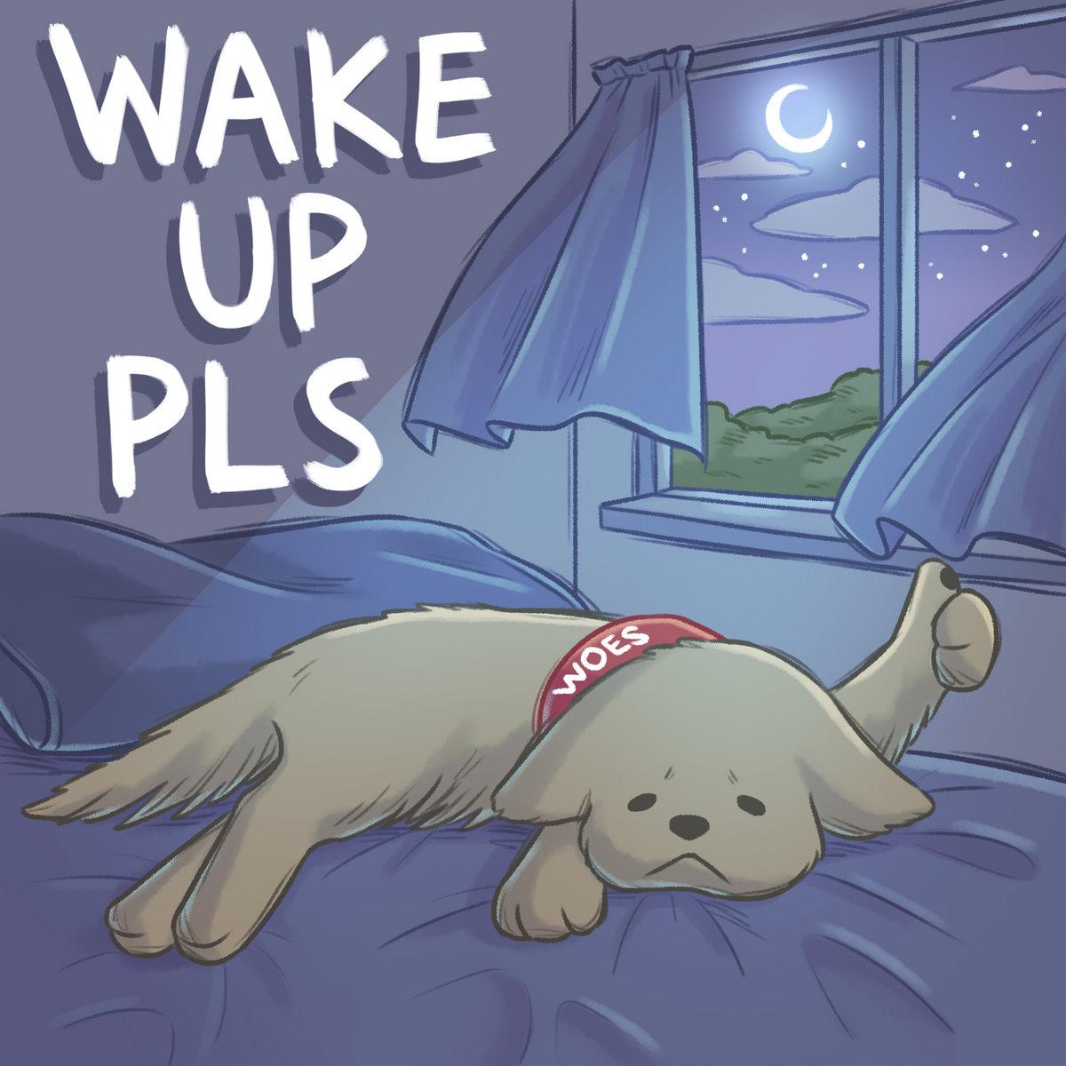 Woes - Wake Up Pls