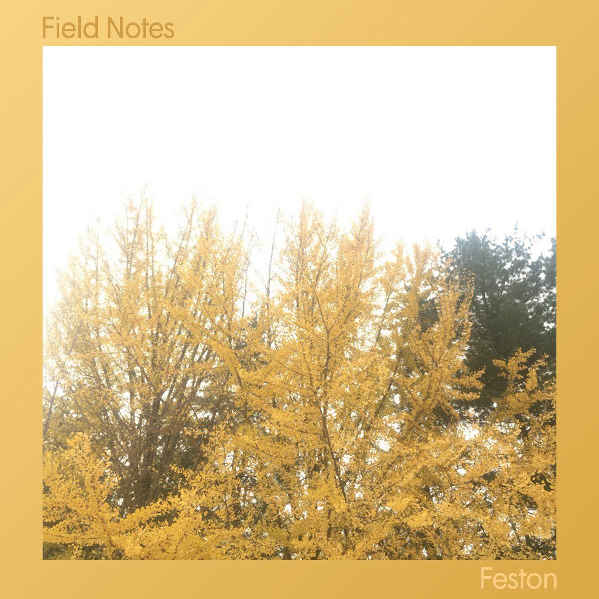 Feston - Field Notes
