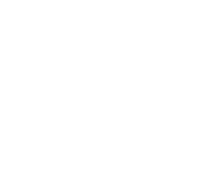 Source Web Solutions won an Innovation award with BigCommerce for our expert ecommerce development in Silver Jewelry Club!