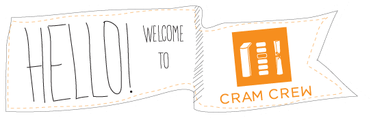 Cram Crew is a custom developed software portal by Source Web Solutions that is essentially a LMS (Learning Management Software).
