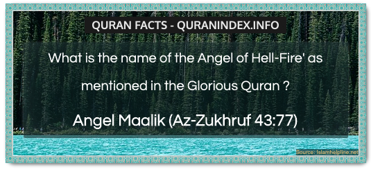 Discover Amazing, Interesting and Beautiful General Quran #Quotes and #Facts @ https://quranindex.info/blog/ [412] #Quran #Islam