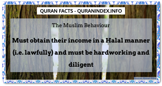 Discover Amazing, Interesting and Beautiful General Quran #Quotes and #Facts @ https://quranindex.info/blog/ [130] #Quran #Islam