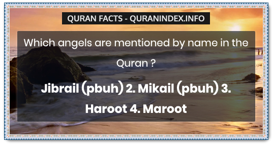 Discover Amazing, Interesting and Beautiful General Quran #Quotes and #Facts @ https://quranindex.info/blog/ [474] #Quran #Islam