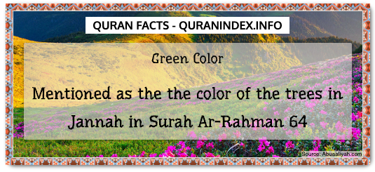 Discover Amazing, Interesting and Beautiful Scientific Quran