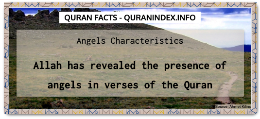 Discover Amazing, Interesting and Beautiful General Quran #Quotes and #Facts @ https://quranindex.info/blog/ [254] #Quran #Islam