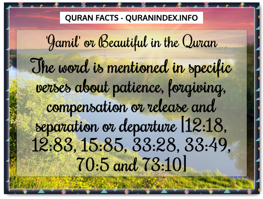 Discover Amazing, Interesting and Beautiful General Quran #Quotes and #Facts @ https://quranindex.info/blog/ [526] #Quran #Islam