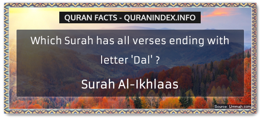 Discover Amazing, Interesting and Beautiful  Quran #Quotes and #Facts @ https://quranindex.info/blog/ [51] #Quran #Islam