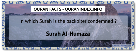 Discover Amazing, Interesting and Beautiful  Quran #Quotes and #Facts @ https://quranindex.info/blog/ [42] #Quran #Islam