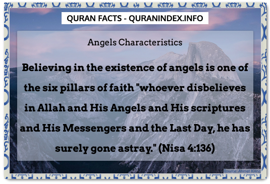 Discover Amazing, Interesting and Beautiful General Quran #Quotes and #Facts @ https://quranindex.info/blog/ [241] #Quran #Islam