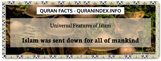 Discover Amazing, Interesting and Beautiful General Quran #Quotes and #Facts @ https://quranindex.info/blog/ [109] #Quran #Islam