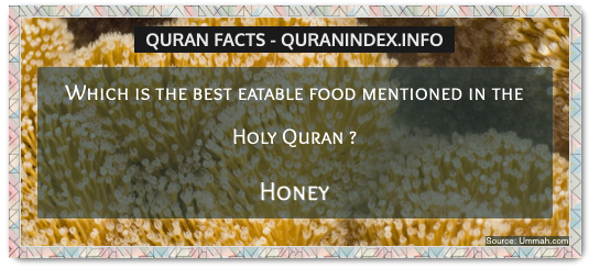 Discover Amazing, Interesting and Beautiful  Quran #Quotes and #Facts @ https://quranindex.info/blog/ [15] #Quran #Islam
