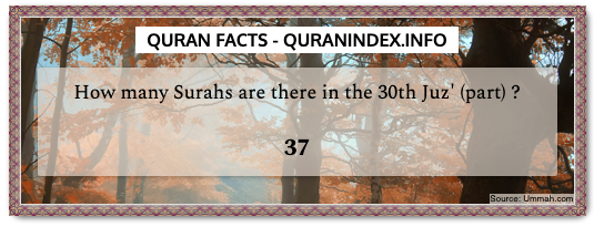 Discover Amazing, Interesting and Beautiful Numerical Quran #Quotes and #Facts @ https://quranindex.info/blog/ [50] #Quran #Islam