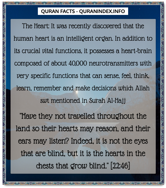 Discover Amazing, Interesting and Beautiful Scientific Quran #Quotes and #Facts @ https://quranindex.info/blog/ [530] #Quran #Islam