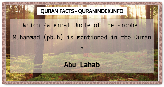 Discover Amazing, Interesting and Beautiful General Quran #Quotes and #Facts @ https://quranindex.info/blog/ [444] #Quran #Islam