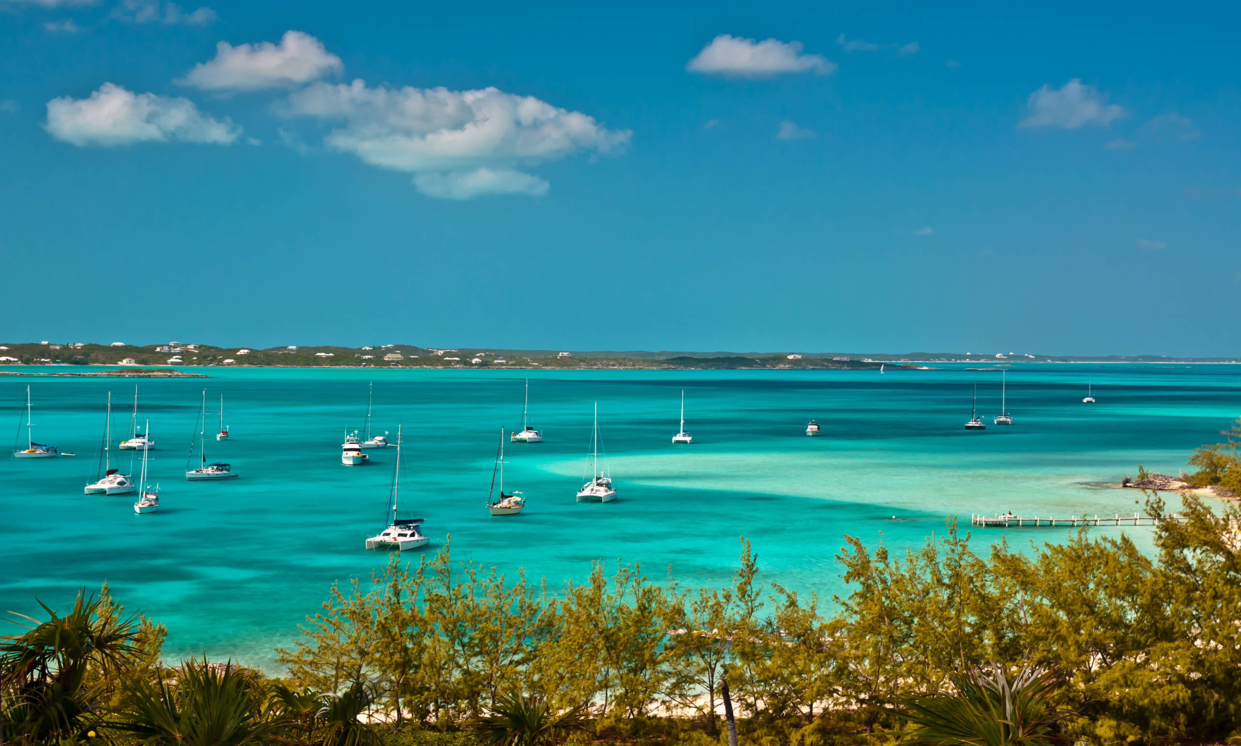 Seeking exotic? Unbeatable yacht share in Florida and the Bahamas