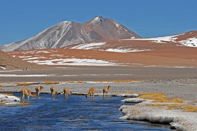 Chile-Patagonia
