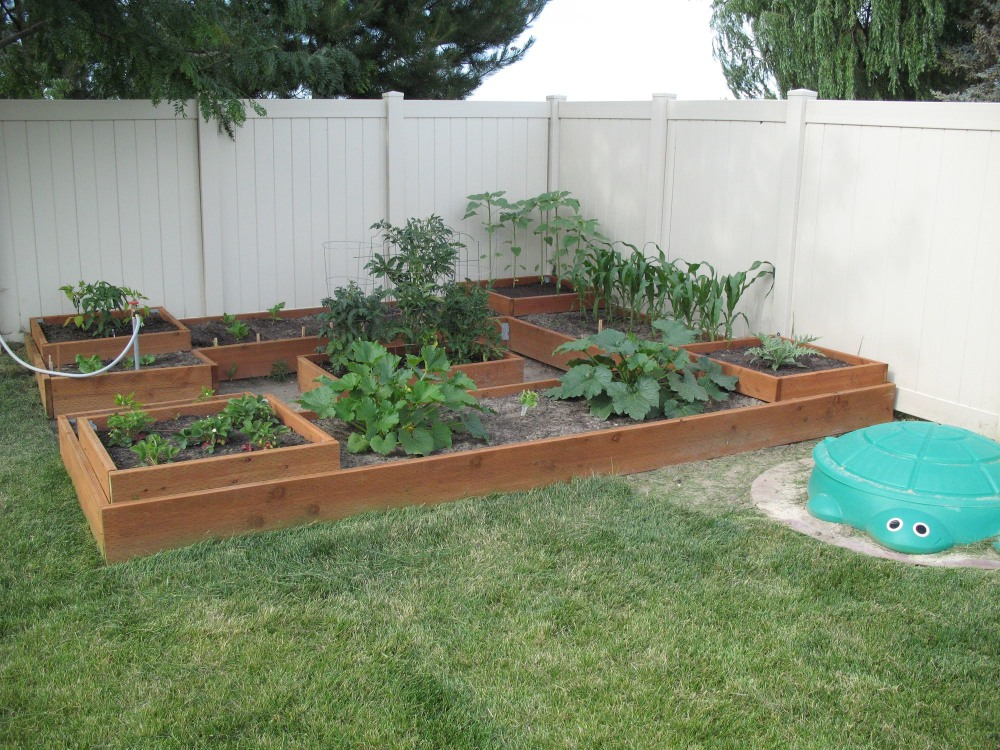 Some Garden Growth