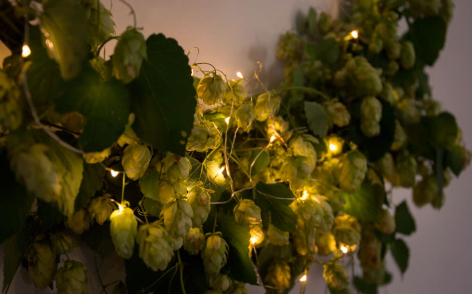 hop hoop lights