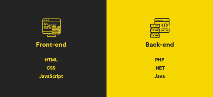 Front-End vs. Back-End devs