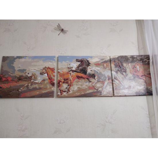 Триптих-картина-image