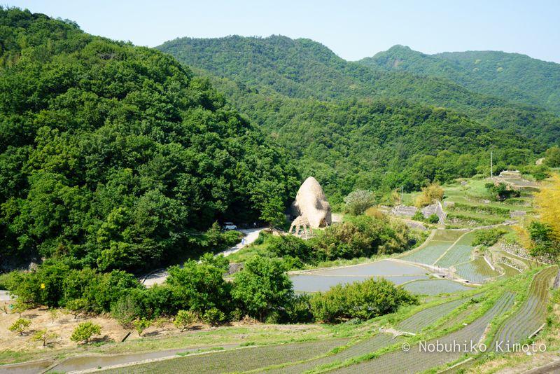 小豆島の恋