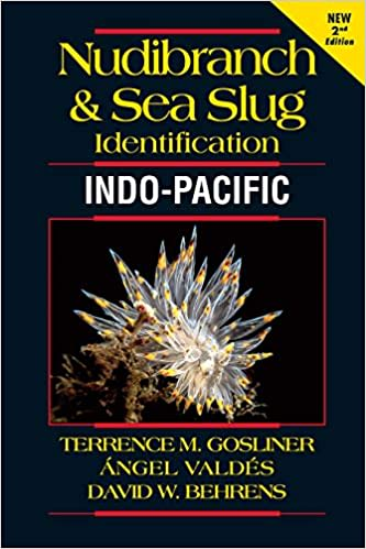Nudibranch & Sea Slug Identification - Indo-pacific