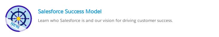 Salesforce Success Model