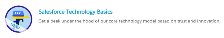 Salesforce Technology Basics