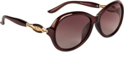 Farenheit Over-sized Sunglasses Brown