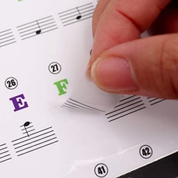 Palap Piano Stickers Labels for 37, 49, 54, 61, 88 Keys Keyboard, Piano Removal Stickers