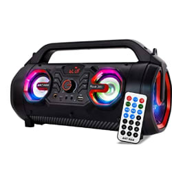 Ant Audio Rock 300 Bluetooth Party Speakers with FM Radio, Micro SD Card, USB, MIC and Aux 3.5 mm Support, Microphone for Karaoke Machine, LED Lights and Subwoofer – 30 watt