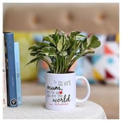 Ferns N Petals happy mothers day plant n printed mug