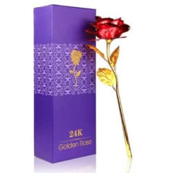 Eastern Club Beautiful Valentine s Day Gifts 24k Golden Red Rose Flower Gold Foil Rose