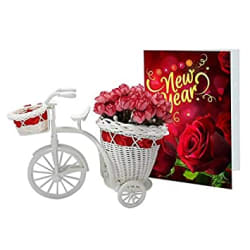 L.O.F Lords of Fashion Plastic New Year and Christmas Flower Basket Cycle with Greeting Card for Friends Girlfriend Best Wishes and Home Decoration , Standard