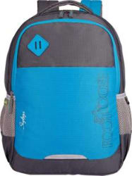 Skybags 15.6 inch Inch Laptop Backpack Blue, Grey