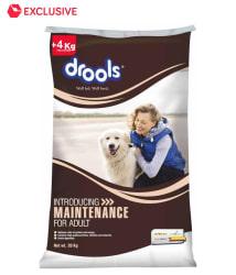 Drools Maintenance Chicken Bases Adult Dog Food- 20 Kg + 4 Kg Free Inside The Bag